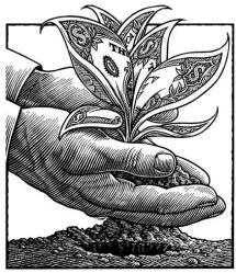 growing money like a master gardener